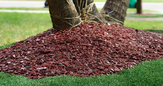 Rubber Mulch - Top Turf Miami