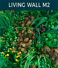living wall basic m2 - Ivy wall | Top Turf Artificial Grass