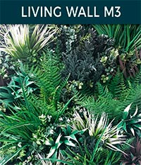 living wall basic m3 - Ivy wall | Top Turf Artificial Grass